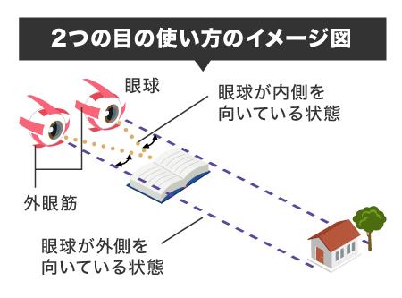 2つの目の使い方のイメージ図