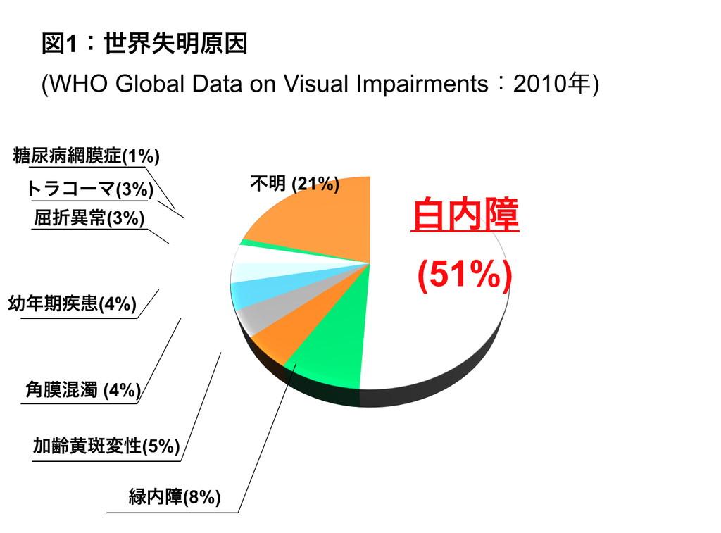 世界失明原因の円グラフ