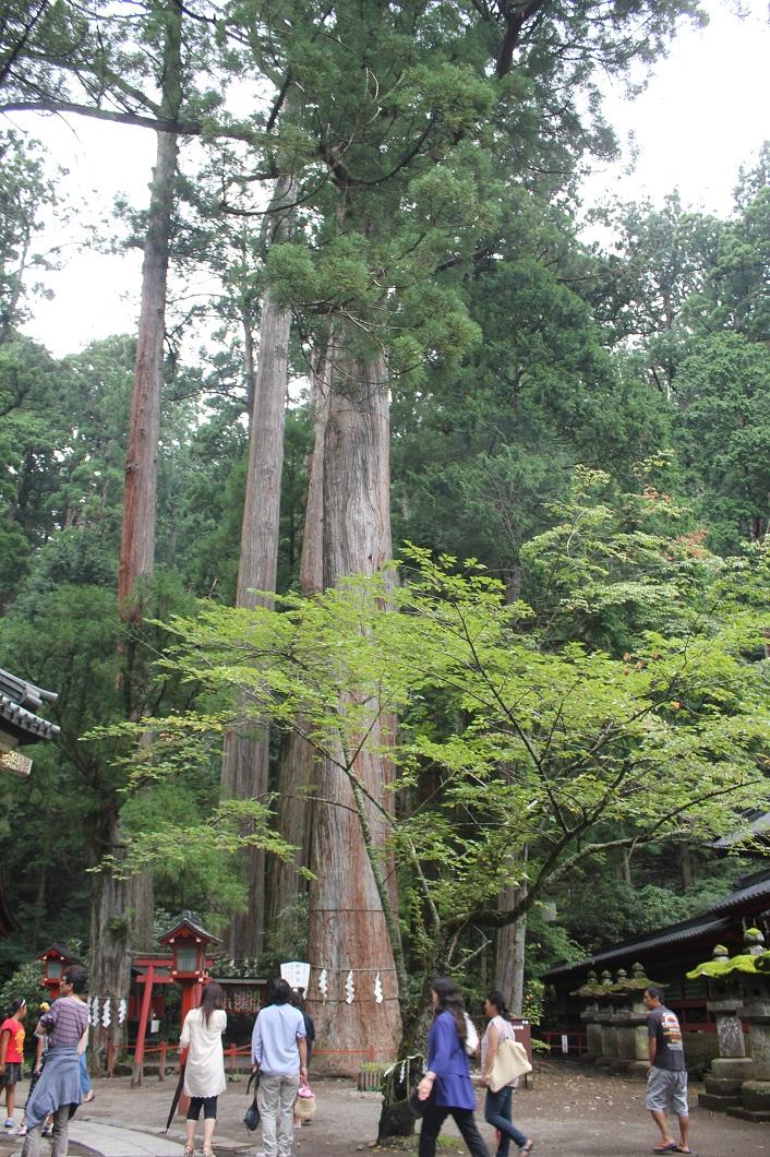 日光二荒山神社の写真