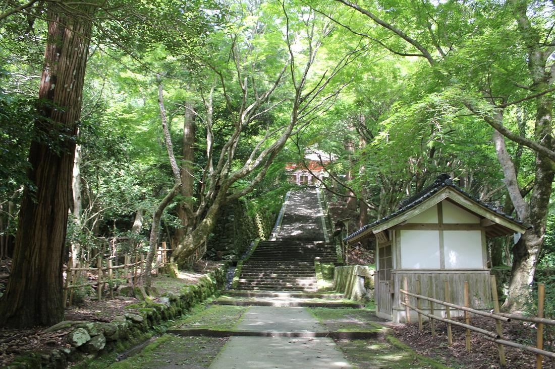 鰐淵寺階段の写真