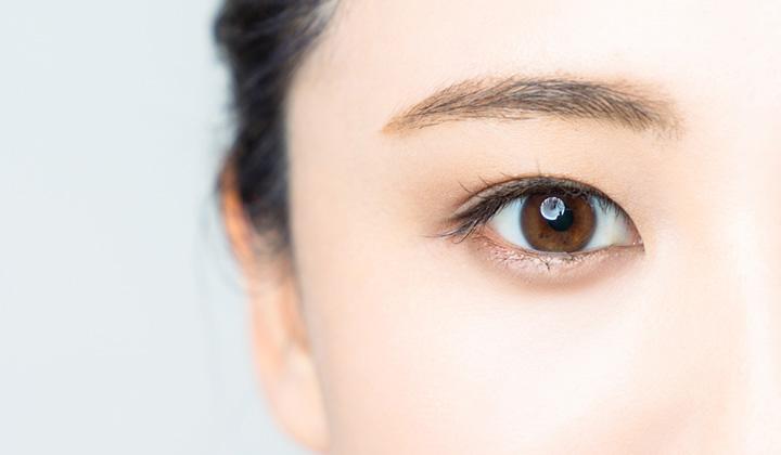 人間の目ってどんな構造なの?物が見える・目が悪くなる仕組みとは