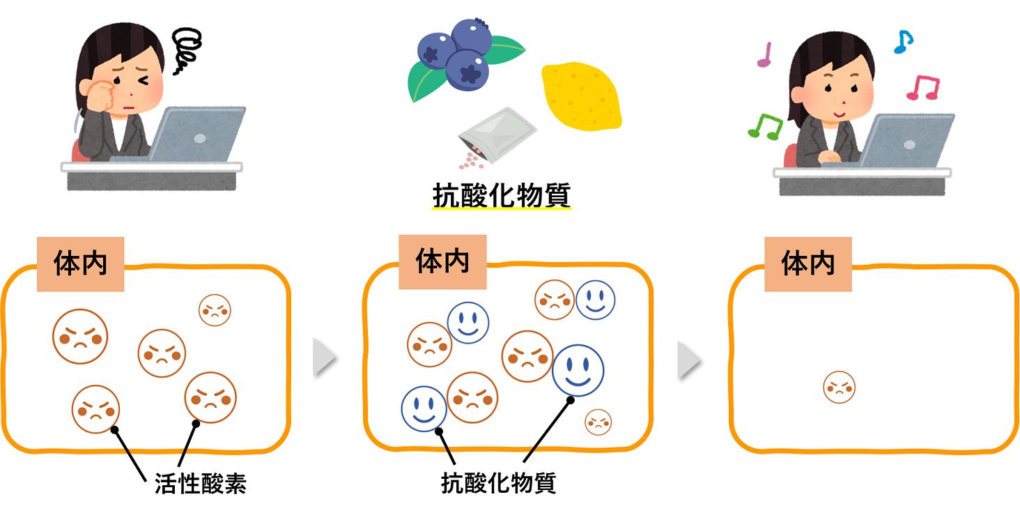 活性酸素と抗酸化物質の図